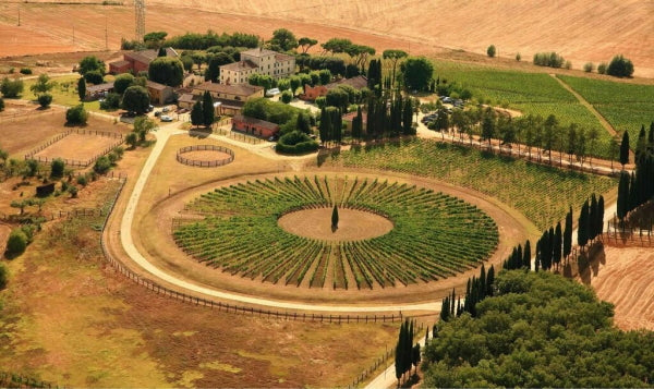 Aerial picture of the Avignonesi estate with view of the buildings and vineyards