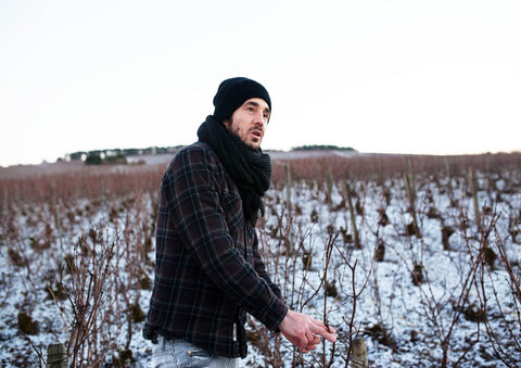 Cédric Bouchard amongst his vines on a winter's morning