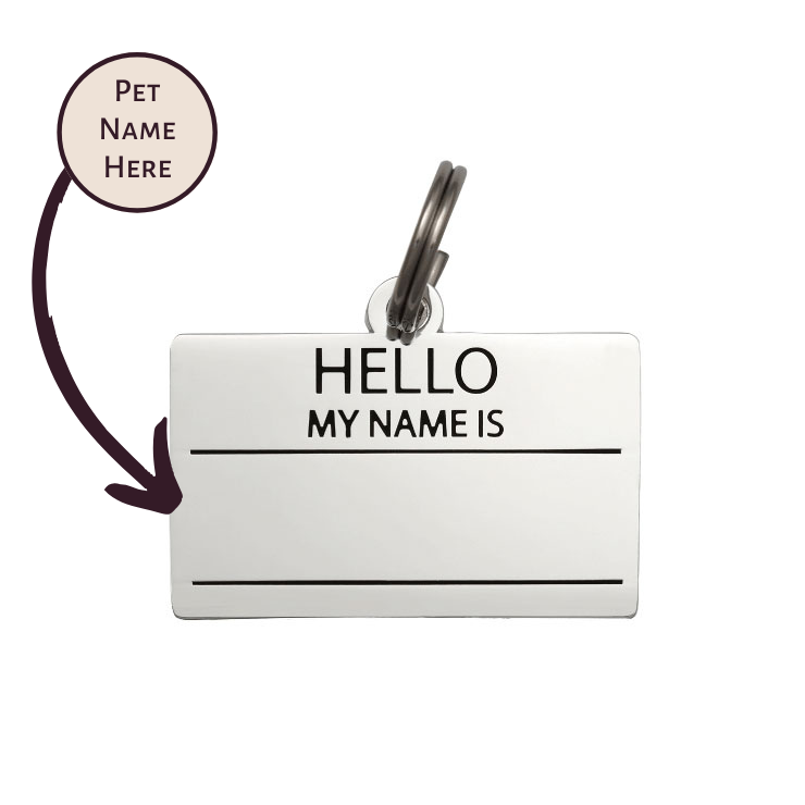 Pet ID Tag - Hello My Name is Blank - Silver - foxyfido