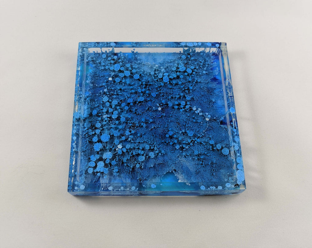 'Petri Dish with a Twist' Square Resin Coaster