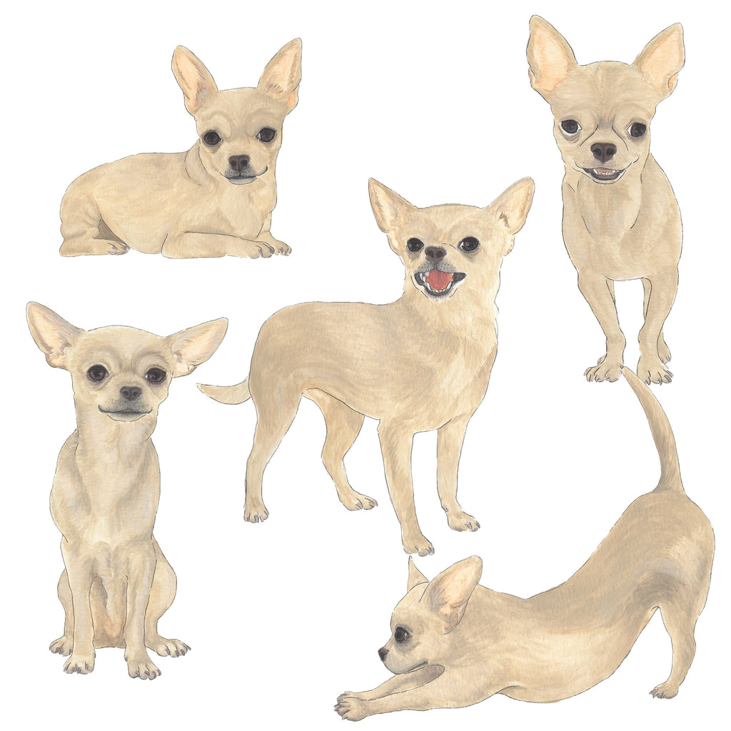 Personalized Chihuahua Fine Art Prints