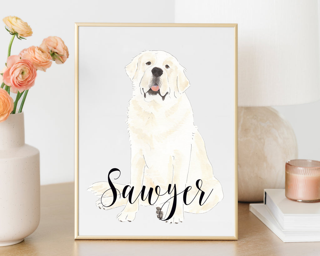 Personalized Saint Bernard Fine Art Print