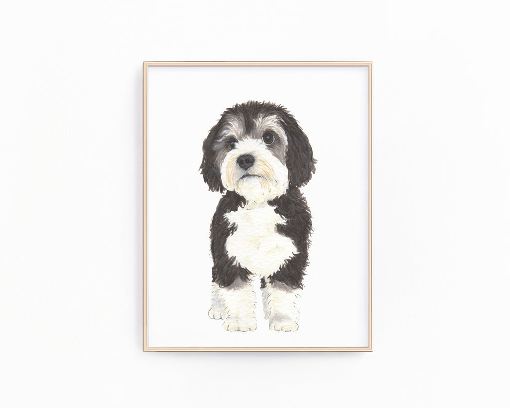 Personalized Bernedoodle Fine Art Prints