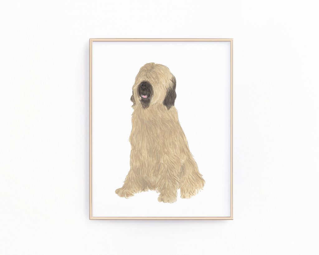 Personalized Briard Fine Art Prints