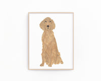 Personalized Irish Setter Fine Art Prints