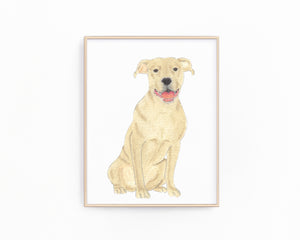 Personalized Pitbull (Fawn) Fine Art Prints