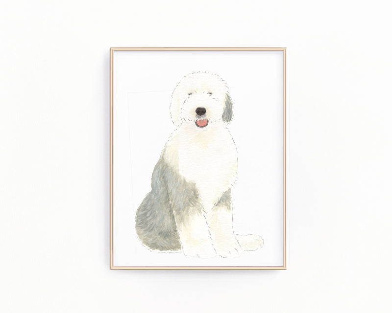 Personalized Old English Sheepdog Fine Art Prints