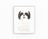 Personalized Shih Tzu (Black & White) Fine Art Prints