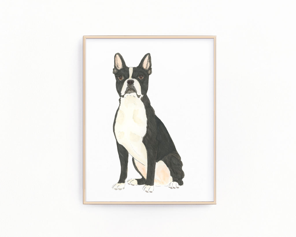 Personalized Boston Terrier Fine Art Prints