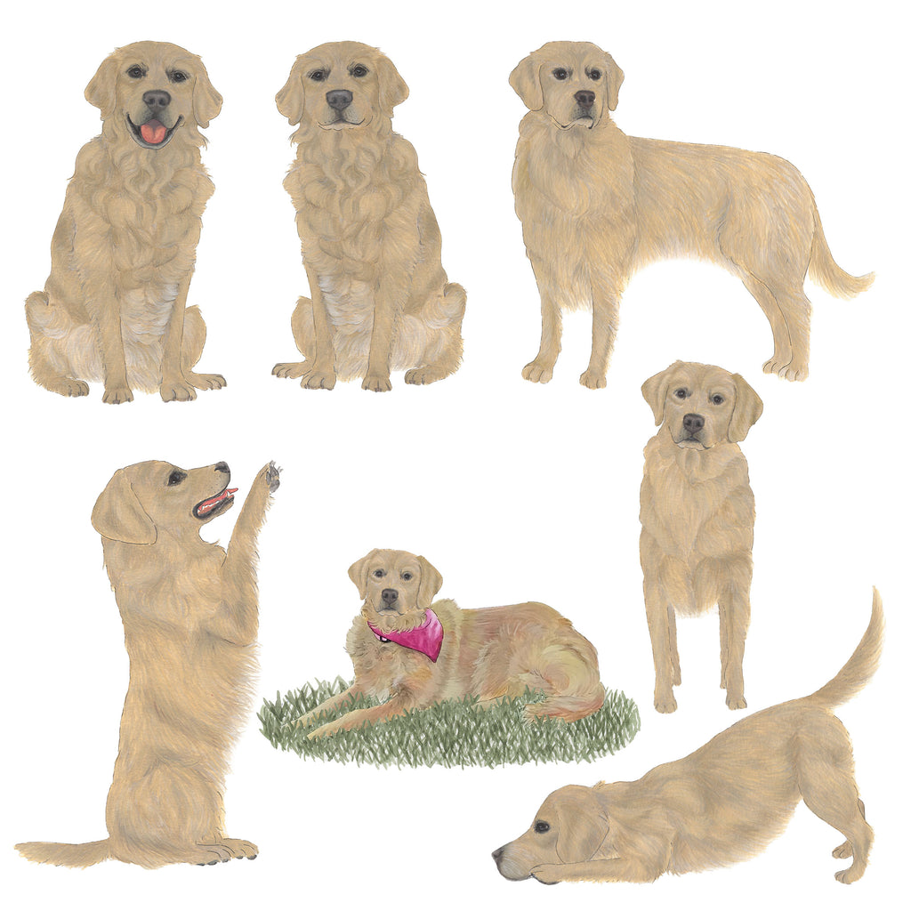 Personalized Fine Art Golden Retriever Prints