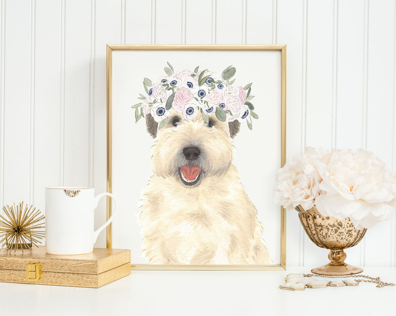 Wheatens in Flowers Prints