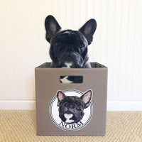 Fawn French Bulldog Storage Bin