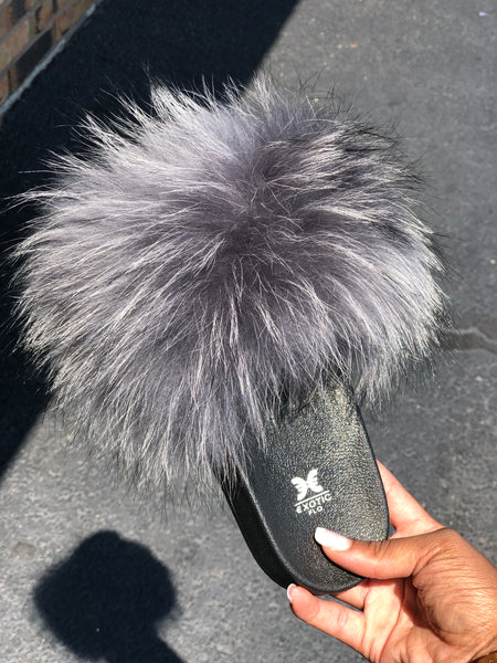 Grey raccoon fur
