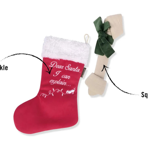 P.L.A.Y. Pet Lifestyle and You - Good Dog Stocking
