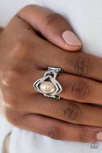 Paparazzi Positively Posh - Brown - Bling It On Online