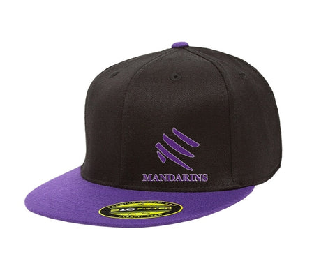 Cap - Baseball Purple and Black Flatbill