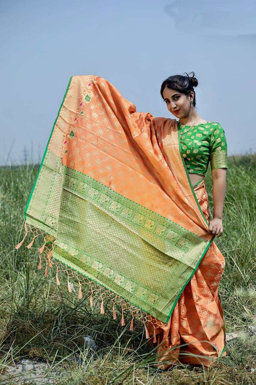 Orange Parrot Silk Weaving Patola with Zari border and Rich Pallu With Contrast Blouse