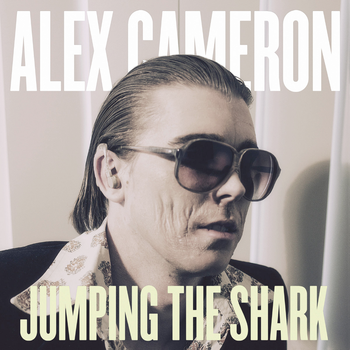 Jumping the Shark Vinyl LP