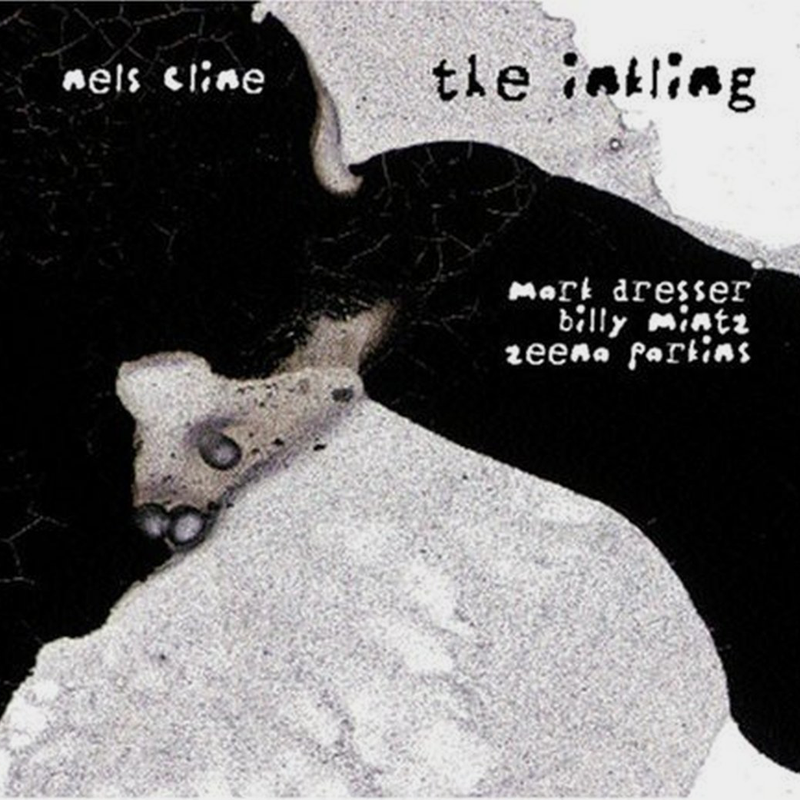 Nels Cline The Inkling CD