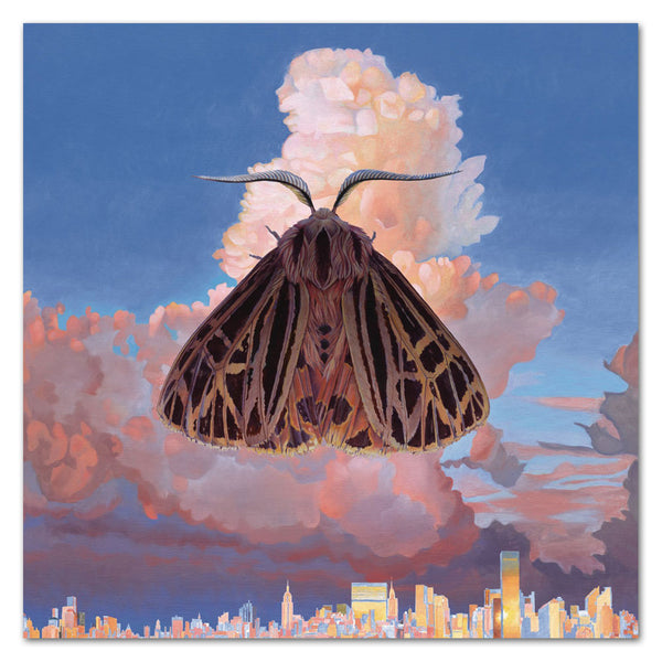 Chairlift Moth CD