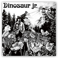Dinosaur Jr. Dinosaur CD