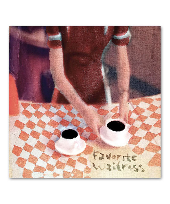 The Felice Brothers Favorite Waitress CD