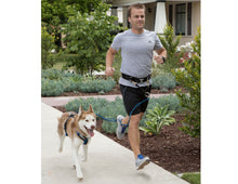 Load image into Gallery viewer, JOGGERS LEASH AND URBAN TRAIL HANDS FREE BELT COMBO