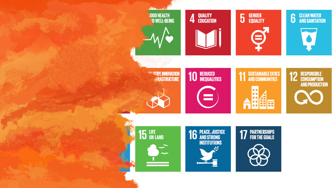 A Guide To the United Nations Sustainable Development Goals