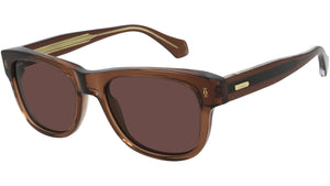 CT0277S 004 transparent brown