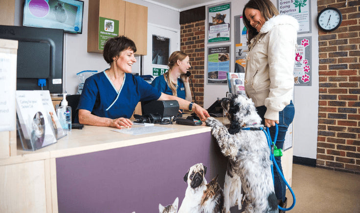 a woman with dog at veterinary clinic