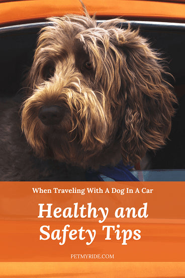 health and safety tips for traveling in the car with your dog