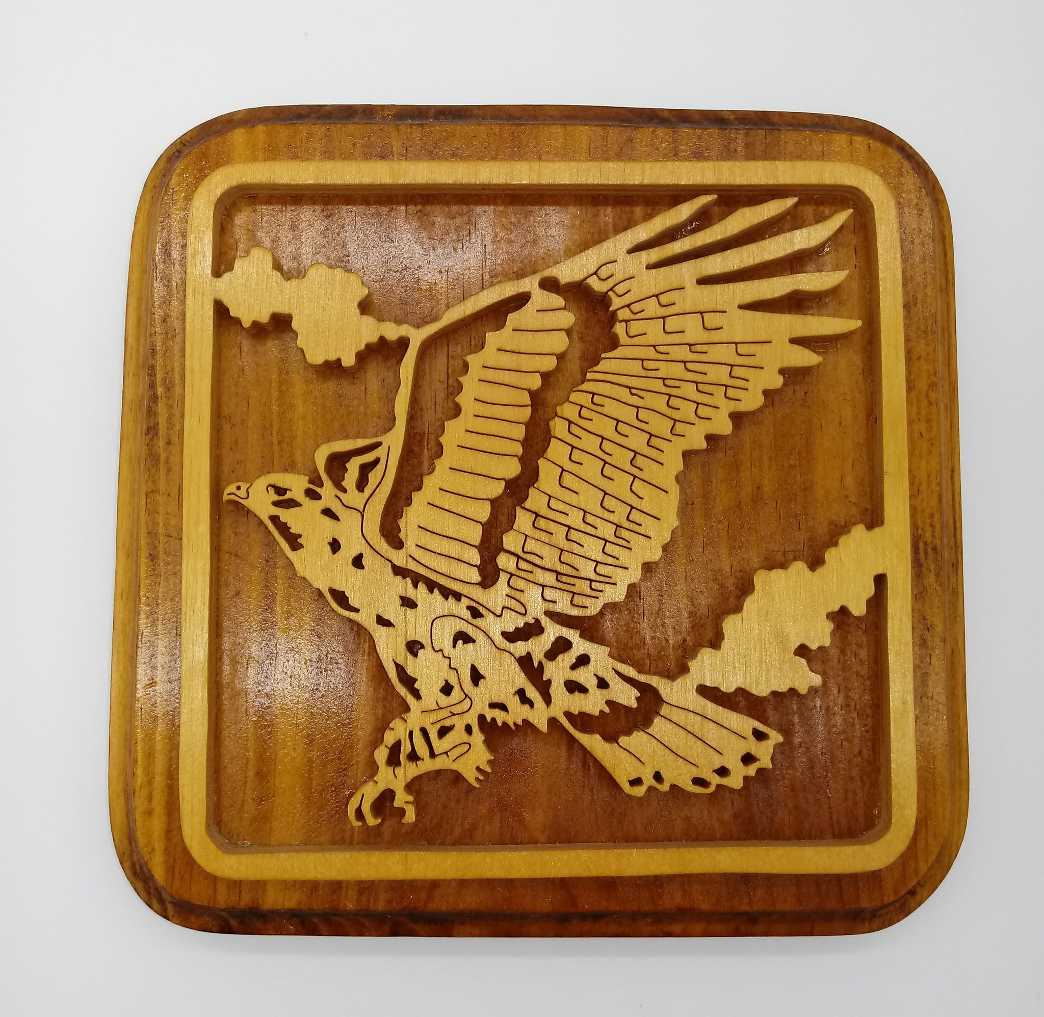 Red Tail Hawk Plaque - Kripp's Kreations