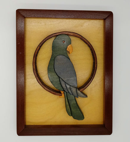 Framed Segmentation Parrot - Kripp's Kreations