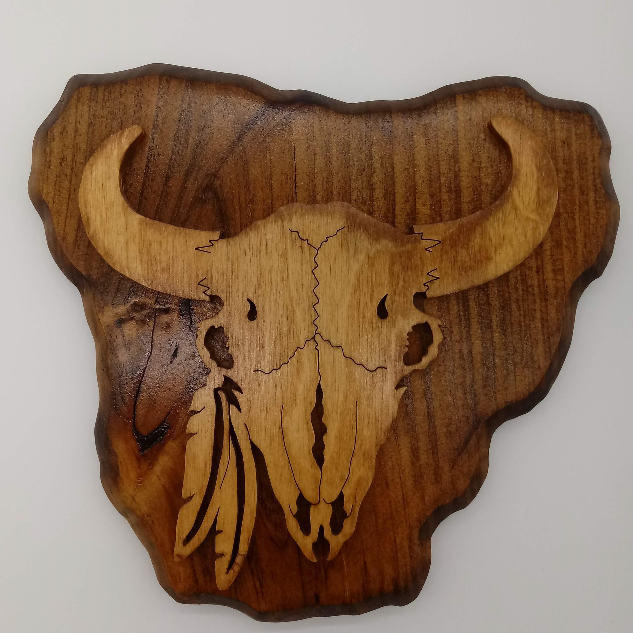 Native American Buffalo Skull with Feathers - Kripp's Kreations