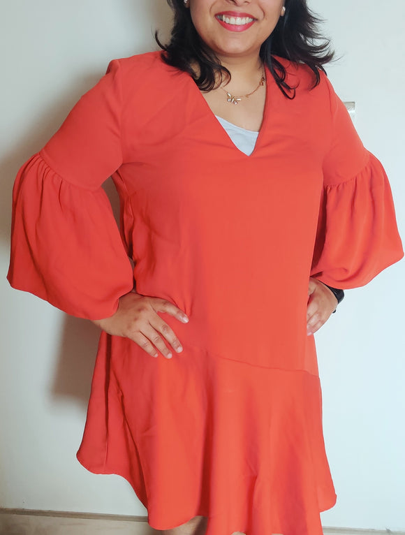 MANGO - Dress with Ruffle Sleeve (sz L)