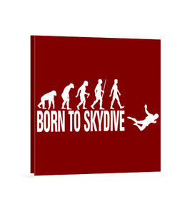 lienzos born to skydive, talla 40 x 40