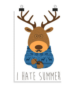 posters i hate summer, talla 20 x 30