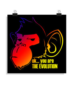 posters monkey evolution colors, talla 40 x 40