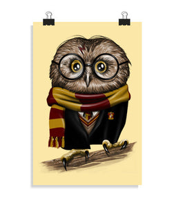 posters owly potter, talla 20 x 30