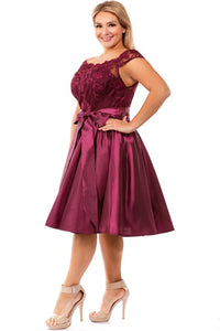 Arianna Curvy  Fit and Flare Dress