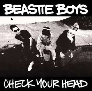 CHECK YOUR HEAD (Vinyl)