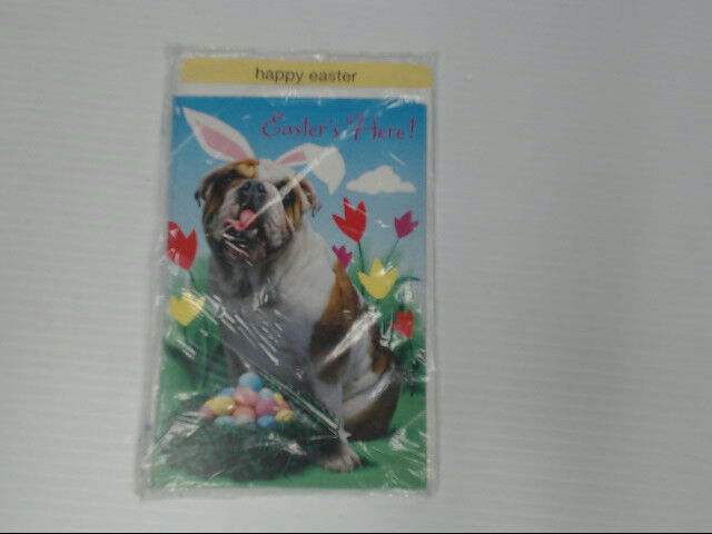 "American Greetings Happy Easter Card ""Easter's Here!"" Bulldog Retail Pack of 6"