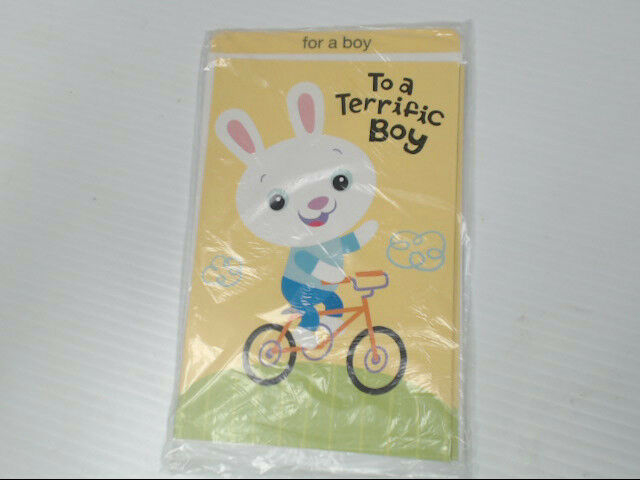 "American Greetings For a Boy Easter Card ""For a Terrific Boy"" Retail Pack of 6"