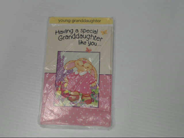 "American Greetings Young Granddaughter Easter Card ""Having A"" Retail Pack of 6"