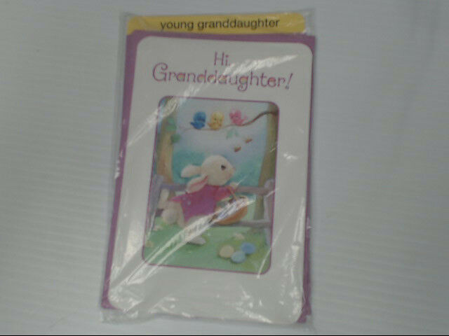 "American Greetings Young Granddaughter Easter Card ""Hi!"" Bunny Retail Pack of 6"