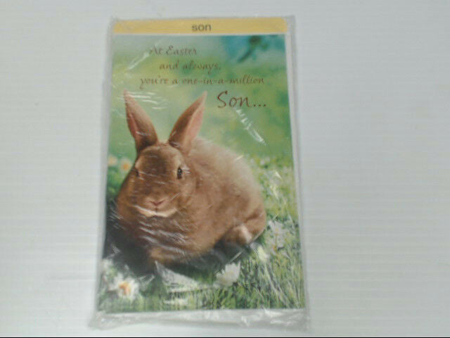"American Greetings Son Easter Card ""At Easter & Always, You're"" Retail Pack of 6"