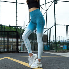 Load image into Gallery viewer, Ombre Seamless Soft Leggins Women Fitness Clothing High Quality SQUAT PROOF Many Colors