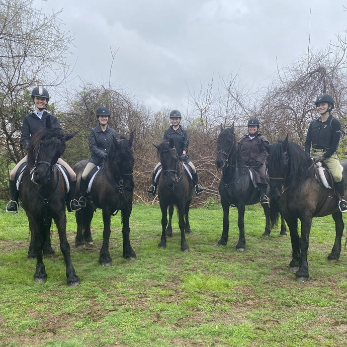 Sunday May 2nd- Monmouth County Hunter Pace- Ride a Friesian- Intermediate Riders