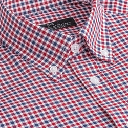 Blue and Red Gingham Slim Fit Button-Down Collar Shirt