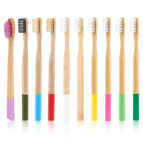 Colorful Organic Toothbrushes - 10 Pcs, Propagating Bamboo Products